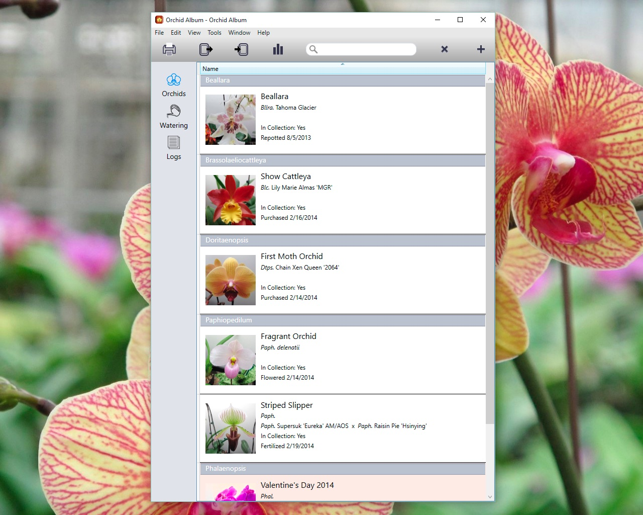 Orchid Album For Pc Preview The Fiction Apps Of Andrew Nicolle